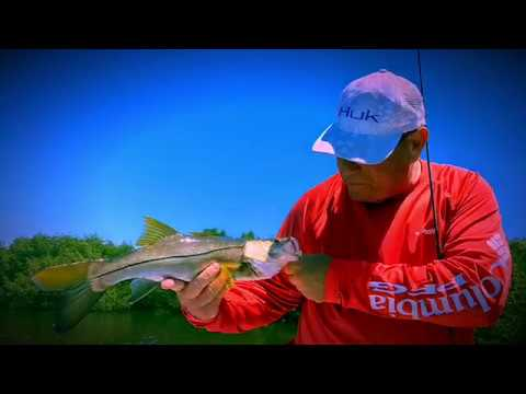 Fort Myers Beach Fishing Charters with Captain Neil